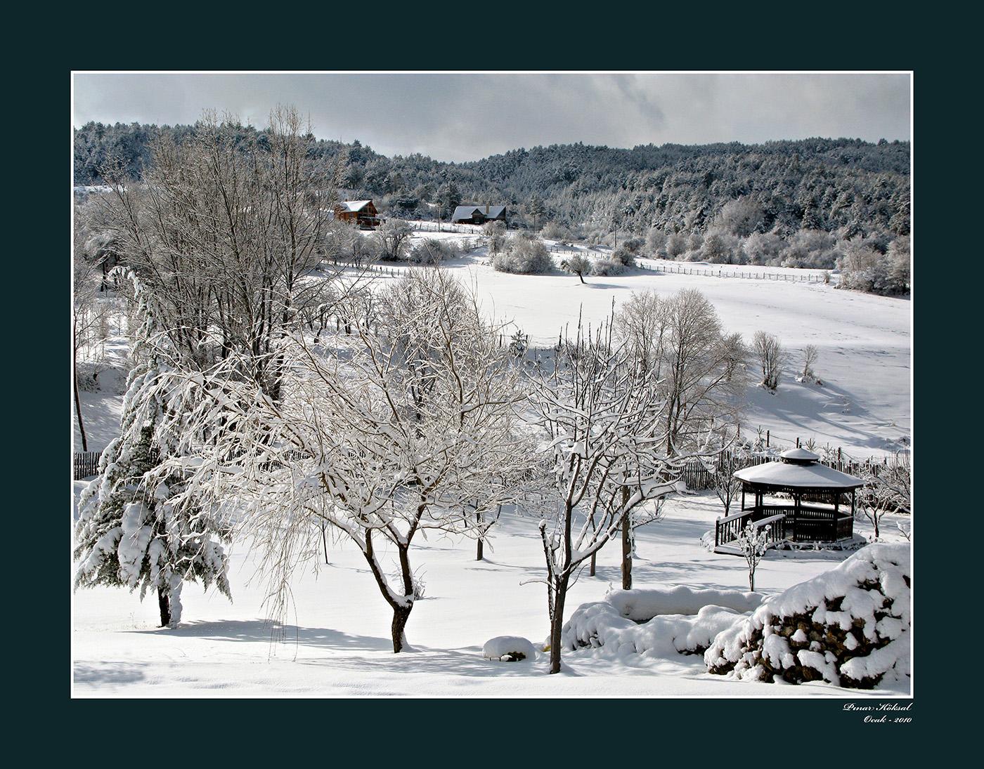 Bahçemde Kış-1, Gövem Köyü, Bolu, Ocak 2010