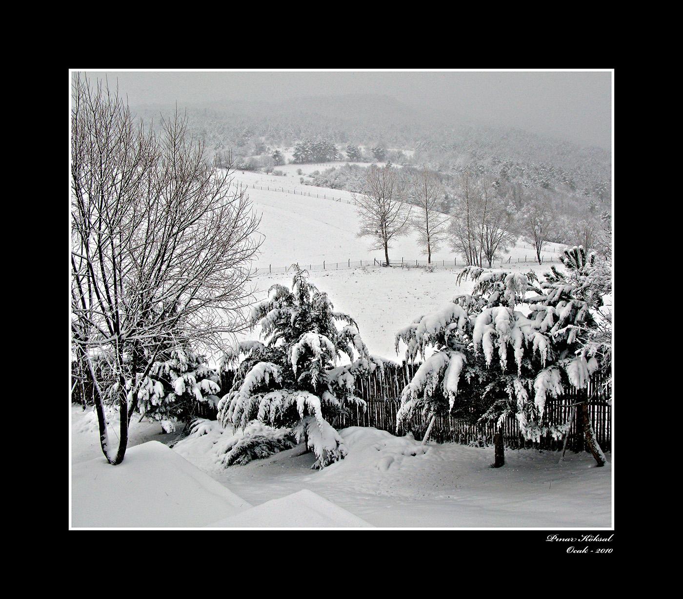 Bahçemde Kış-2, Gövem Köyü, Bolu, Ocak 2010