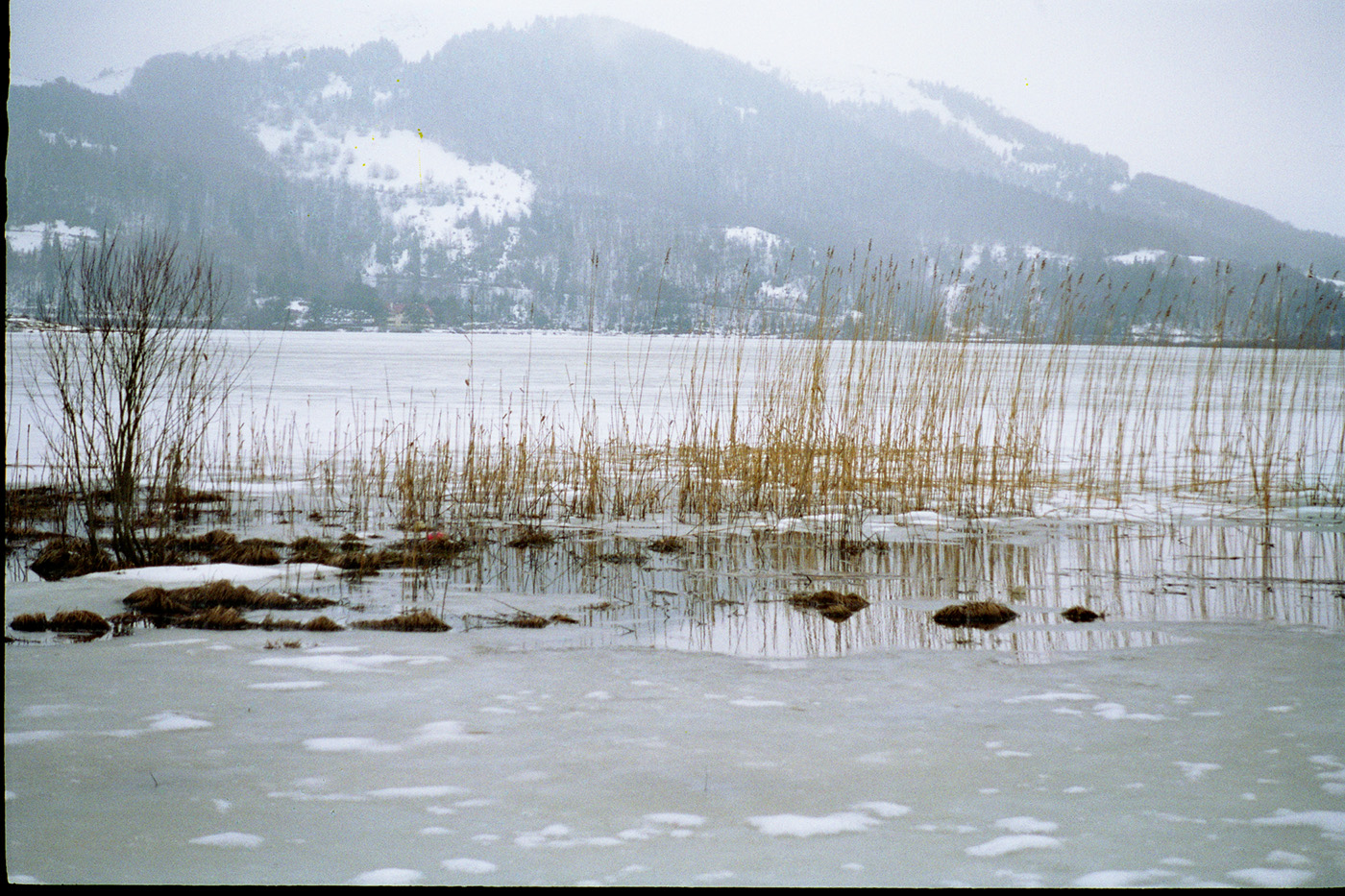 Abant'ta Kış